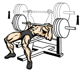 bench_press.png